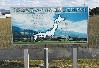 T熊本県産のイ畳を推奨しています